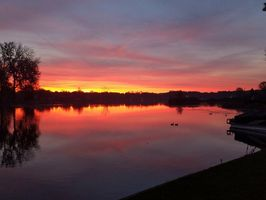 Photo for 3BR House Vacation Rental in Brandon Twp, Michigan