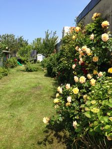 Photo for Nice house in Berck Plage, quiet with a beautiful garden and sunny