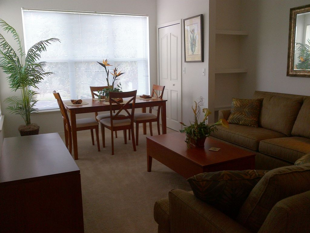 Open area for Living   Dining. one bed   One full Bath in Legacy Dunes      HomeAway Kissimmee