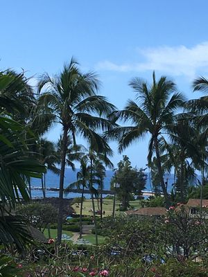 View from lanai-- pool between unit and beach- pool umbrellas at photo bottom