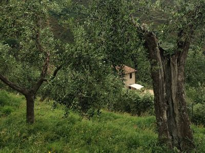 Photo for Campo dei Lupi holiday home in a farmhouse for nature lovers