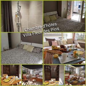 Photo for Guest Room with Veranda and Private Shower Room