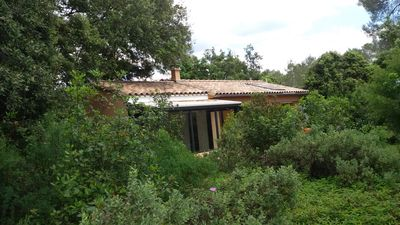 Photo for 3 room maisonette in the middle of the woods in Assas with swimming pool