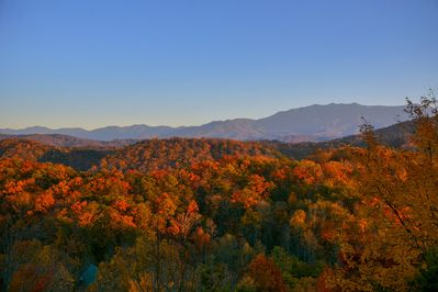 Amazing late afternoon fall colors (11/11/14)