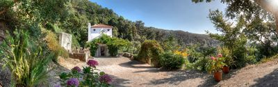 Photo for A 3 Storey Country House Nestled in 10 Hectares of Woodland