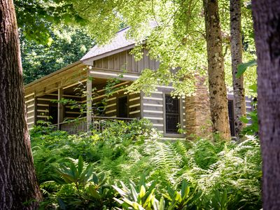 Photo for Cabin at Magic Tree Sanctuary On 53 Acres, Private, Just Off Blue Ridge Parkway