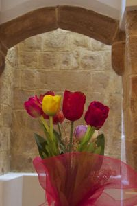 Photo for Papparina House-Home Tulip
