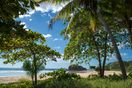 Soothe The Soul, Walk The Beach! Amazing Northern Playa Grande Location.
