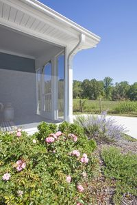 Summer is in bloom at the farmhouse, such a great place to getaway and relax!