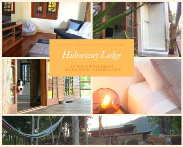 Photo for Whitsunday's Hideaway Lodge | Pet Friendly | Like a treehouse |