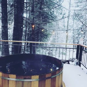 Photo for Tranquil Forest House  w/ Jacuzzi, Sauna, and Pool Access--Near Coal Creek