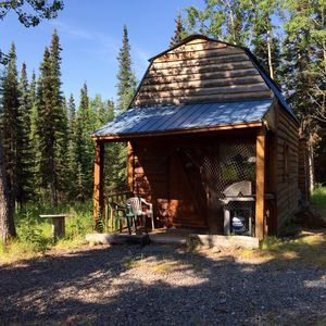 Forget-Me-Not Cabin-in-the-Woods
