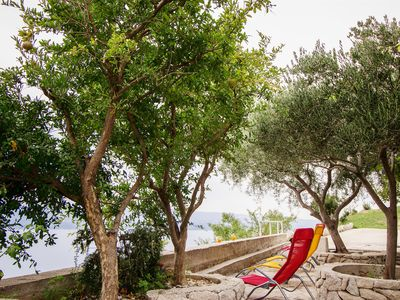 Photo for Holiday house in a quiet and peaceful environment