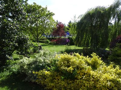 Photo for Holiday Homes - ostseenah - gentle tourism in beautiful nature, near K-born