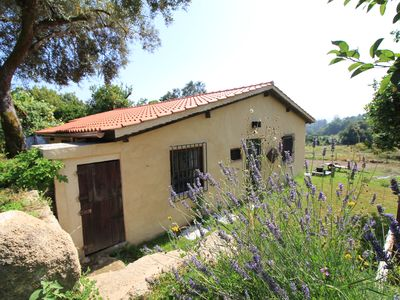 Photo for Vilar de Rei House - Peace and flavors of the countryside