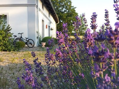 Photo for Apartment Blanki Sport Activ in Blanki - 4 persons, 1 bedrooms