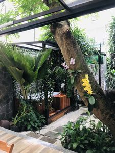 Photo for Guest in a Beautiful Urban Spa with Garden in the Heart of Ipanema.
