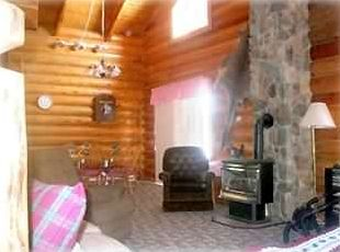 Large Living Room w/ cozy fireplace, TV, VCR, DVD, Stereo, and add'l sleeping