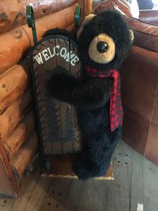 Welcome to our Bear Creek Lodge!