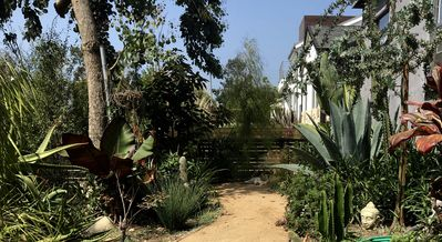 Photo for Venice Beach garden bungalow, airy, comfy. Seven blocks from the beach.
