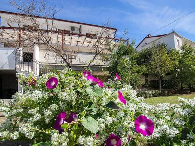 Photo for Apartments Seaview, Starigrad Paklenica  in Norddalmatien - 6 persons, 1 bedroom