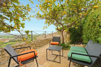 Terrace with lemontrees