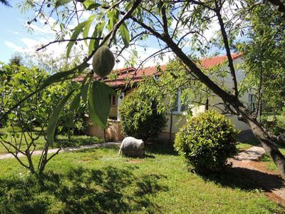 Photo for Holiday house Poreč for 3 - 5 persons with 2 bedrooms - Holiday house