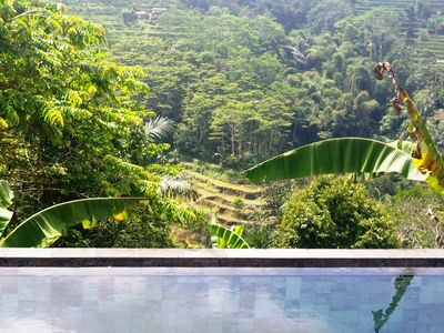 Photo for 1BR Apartment Vacation Rental in Tabanan Regency, Bali