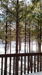 Photo for Townhome on Golf Course in Flagstaff, AZ - Grand Canyon