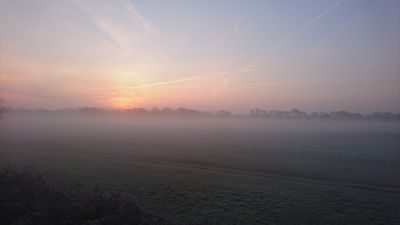 A Winter's Dawn as seen from the house.
