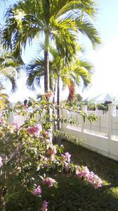 Photo for Ste Anne, very nice flat of 28m ² very calm