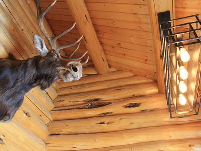 Wind River Country/Yellowstone retreat at Spruce Lodge