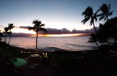 Photo for Experience All that Maui Has to Offer at Hoyochi Nikko 207