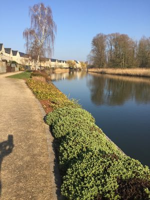 Photo for 2BR Apartment Vacation Rental in Saint Neots, England
