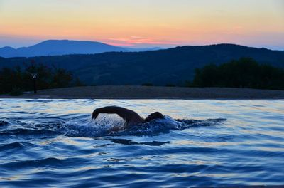 Late afternoon swim in the infinity pool