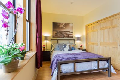 Sunny contemporary bedroom with queen bed; large closet