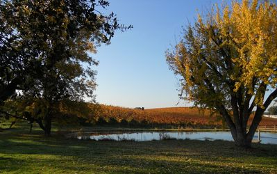Private access to the winery!