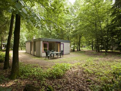 Photo for Bungalow set holiday resort with swimming pool in the heart of the Veluwe region