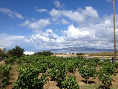 The villa in its vineyard; the island across the sea is Paros