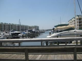 Photo for Harbour Village: golf, marina and most spectacular beach