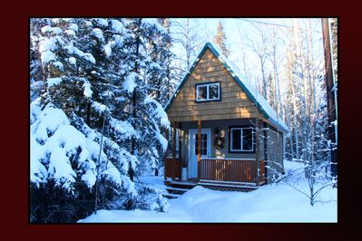 Cabin Snowshoe, your place to explore wildlife and our gorgeous Northern Lights.