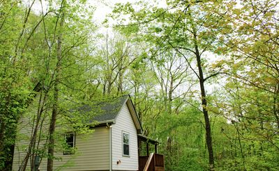 Photo for Quiet Cottage In The Woods Close To Avl & Blk Mtn