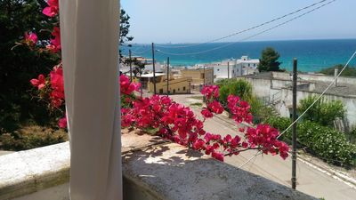 Photo for Gallipoli / Lido Conchiglie - apartment in villa - terrace with sea view