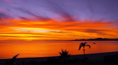 A beautiful sunrise view from your balcony.