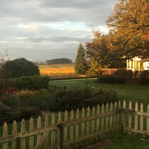 Photo for Comfortable Cottage at Vineyard For Your Stay As You Explore Willamette Valley
