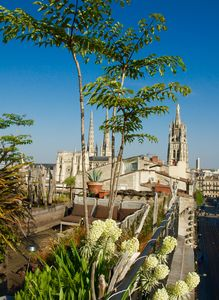 Photo for Roof top views of Bordeaux