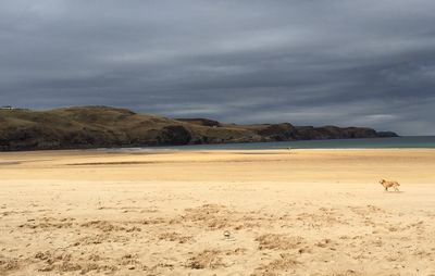 Photo for Static Caravan with stunning view of Strathy Bay