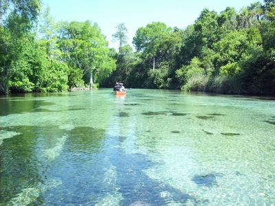 Photo for Manatee Cove! 2 Bedroom PRIVATE Suite Right on the Main Weeki Wachee River