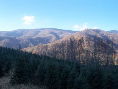 Photo for Spectacular Views of Roan Mountain with Horse Barn/Pasture