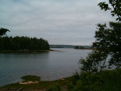 Shoreline of lower property. River leading into New London Bay.